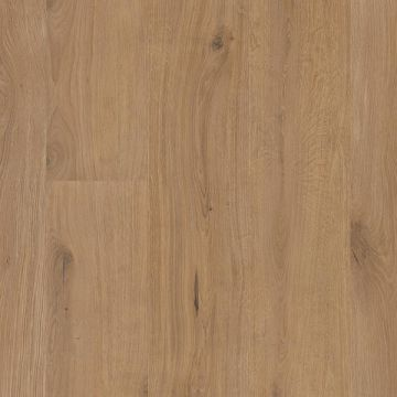 6208 Tilo Vinylboden Elito Trend 10 mm