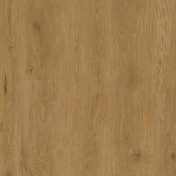 6209 Tilo Vinylboden Elito Trend 10 mm
